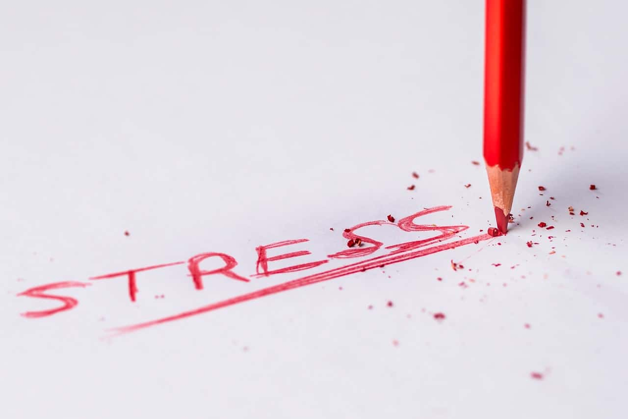 Stress: A Common Denominator